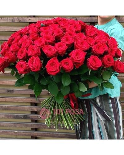 """101 Роза  """"Ярче не бывает"""""""