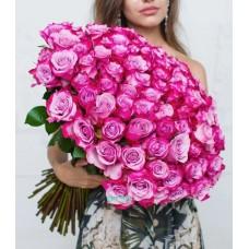 101 Роза Дип Перпл (Эквадор)