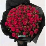 101  пионовидная Роза Ред Пиано