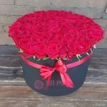 """101 Роза в коробке """"Красная королева"""""""
