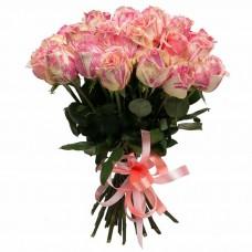 25 Роз Фиеста