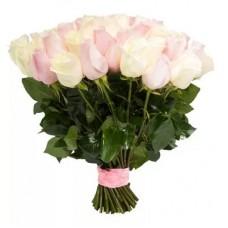 """51 Роза """"Зефирное наслаждение"""" (Эквадор)"""