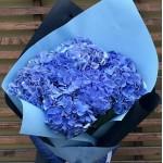 Букет синих Гортензий