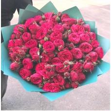 51 пионовидная Роза Ред Пиано