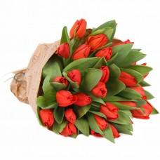 """Тюльпаны """"Остров любви"""""""