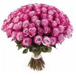 101 Роза Дип Пепл (Эквадор)