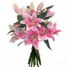 Лилия Восточная розовая
