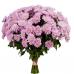 Хризантема Бакарди розовая