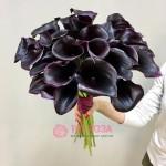 Черные Каллы