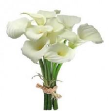 Каллы белые 50 см