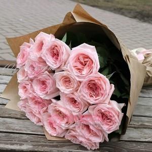 Розы Пинк О Хара