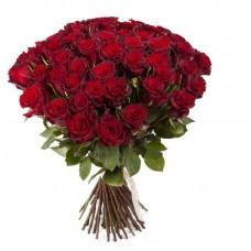 Роза Ред Париж (Эквадор)