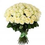 Роза ароматная Норм Джинн