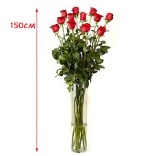 Розы высокие (Розы - гиганты)