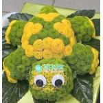 """Игрушка из цветов """"Черепаха"""""""