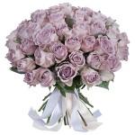 51 Роза фиолетовая