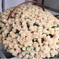 Корзина 1001 Роза Талеа