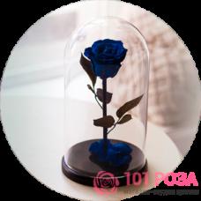 Как сохранить букет роз намного дольше?